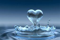 Livro Amor e Renúncia -A linda história de Jô